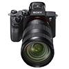 Sony a7R III – полнокадровая беззеркалка с разрешением 42,4 МП и непрерывной съёмкой 10 кадров в секунду