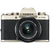 FUJIFILM X-T100 – новинка в линейке цифровых беззеркальных камер серии Х