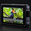 Atomos Shinobi – новый Full-HD HDMI монитор для блогеров