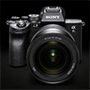 Полнокадровая беззеркальная камера Sony Alpha 7S III